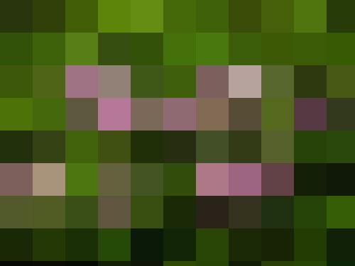 Water-lilies-mosiac.jpg